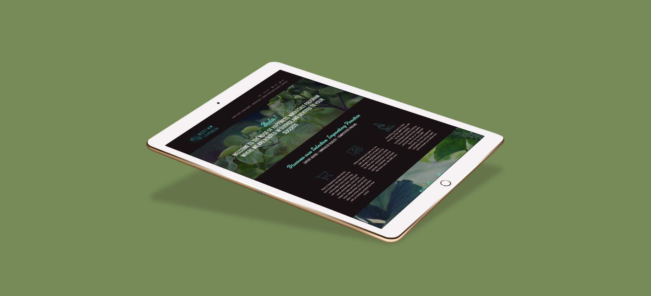 website responsive kava ipad design